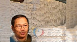 Piñol to PITC: Government funds must be use in importing rice