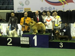 PCCI Philippine Circuit 2019 holds successful 'Asia's biggest dog show'