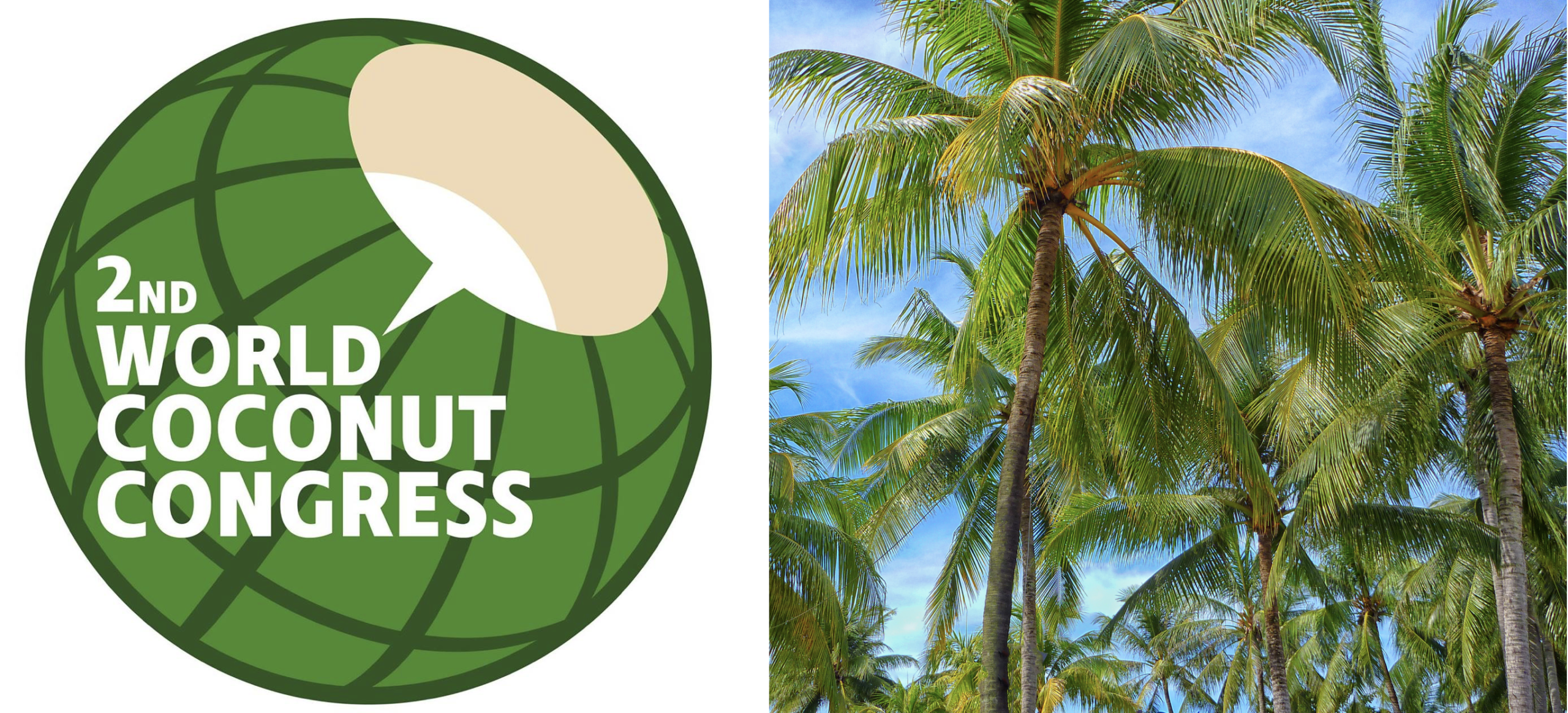 Philippine Coconut Industry: Sets for a Big Rebound via Consumer Products Manufacturing