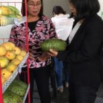 DAR Agripreneurial Expo in Negros Occidental highlights ARBO products