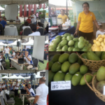 Philippine Mangoes take centerstage at 18th National Mango Festival in QC