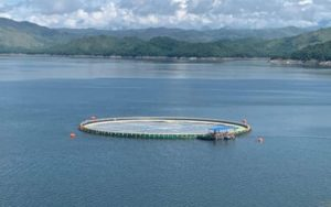 Fishing community in Tawi-Tawi gets first floating solar farm