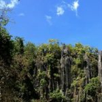 INVESTOUR: Incentives for investors in Palawan tourism